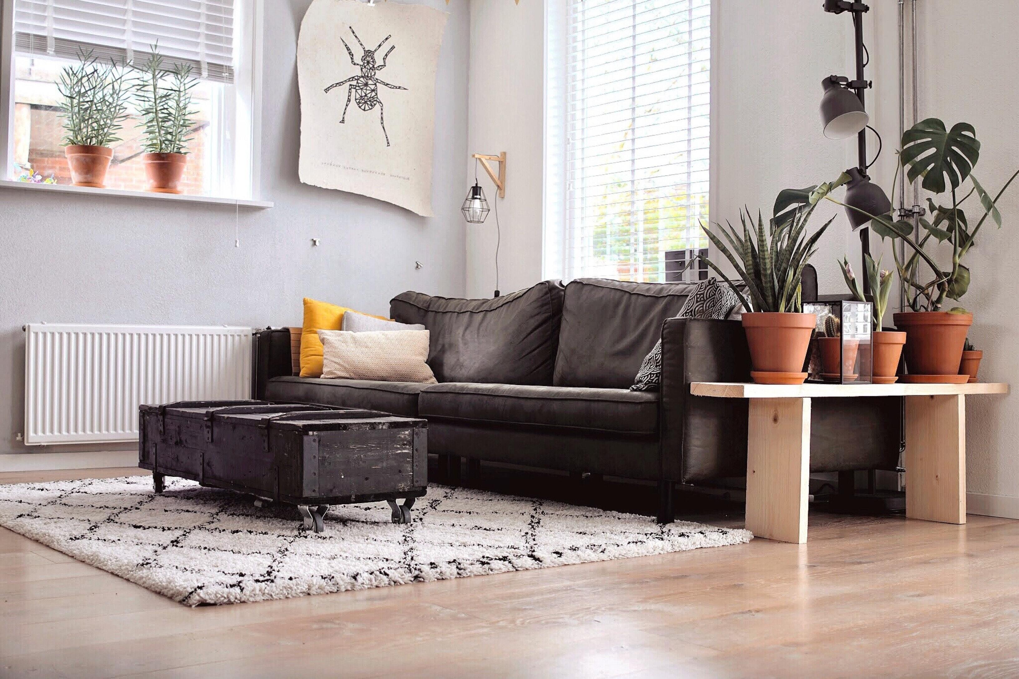 Wohnzimmer einer Mietwohnung